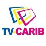 tvcarib logo