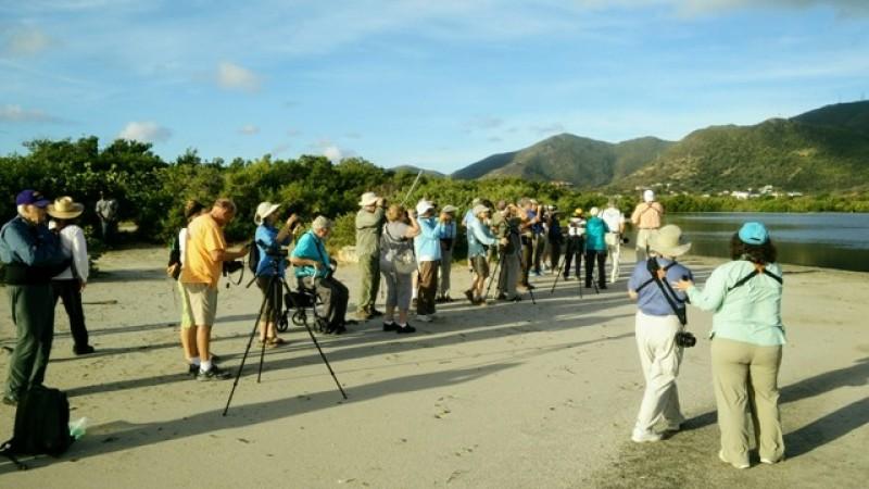 Thirty-three Birders, Including Celebrity Bird Expert and Author, Conduct Birding Tour of Sint Maarten