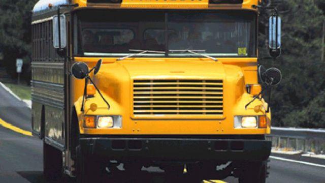 school-bus11.jpg