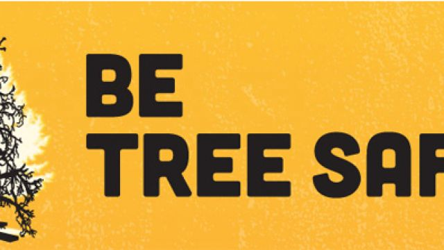 tree-safe.jpg